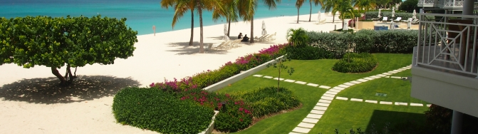 Beach View & Banner